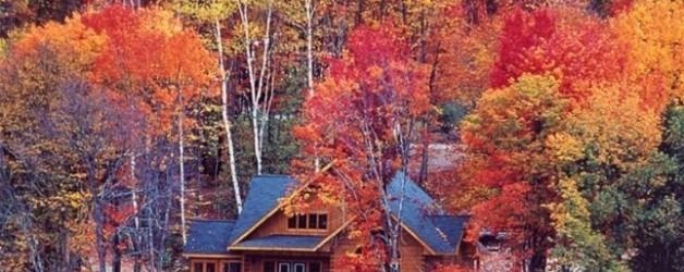 A Guide to Fall Foliage