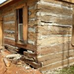 Rotten Logs to Be Replaced