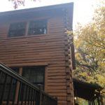 Log Rot Repair